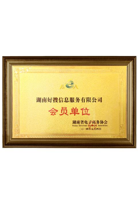 湖南省电子商务协会会员单位